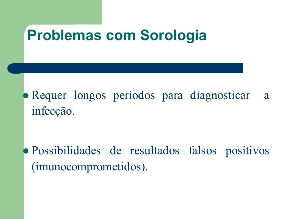Problemas com Sorologia Requer longos períodos para diagnosticar a infecção. Possibilidades de resultados falsos positivos (imunocomprometidos).