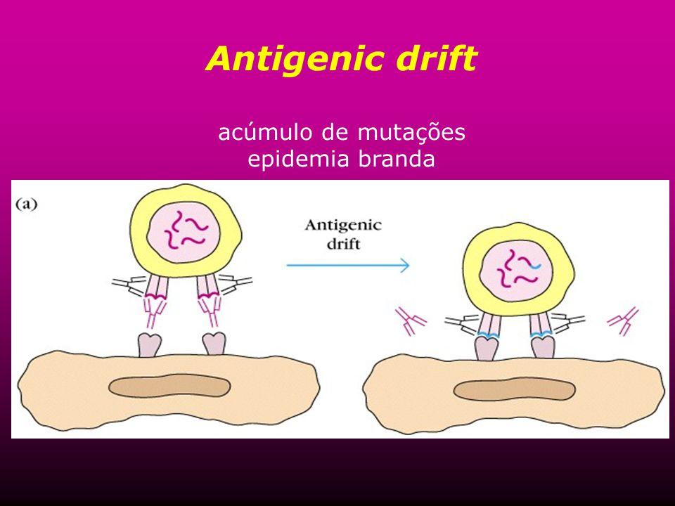 Antigenic drift acúmulo de mutações epidemia branda