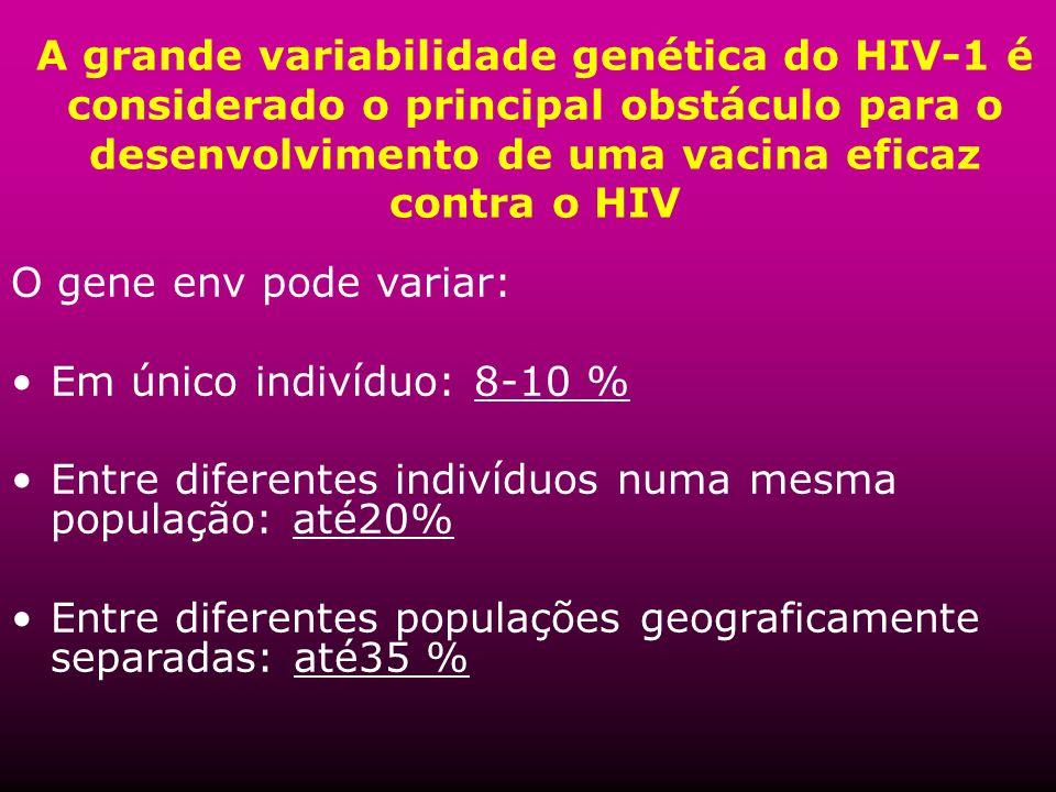 A grande variabilidade genética do HIV-1 é considerado o principal obstáculo para o desenvolvimento de uma vacina eficaz contra o HIV O gene env pode