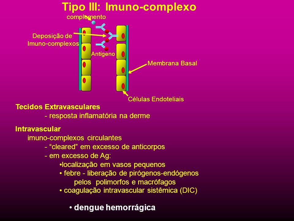 Tipo III: Imuno-complexo Antígeno Deposição de Imuno-complexos Células Endoteliais Membrana Basal complemento Tecidos Extravasculares - resposta infla
