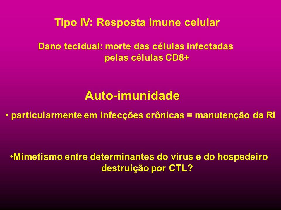 Tipo IV: Resposta imune celular Dano tecidual: morte das células infectadas pelas células CD8+ Auto-imunidade particularmente em infecções crônicas =