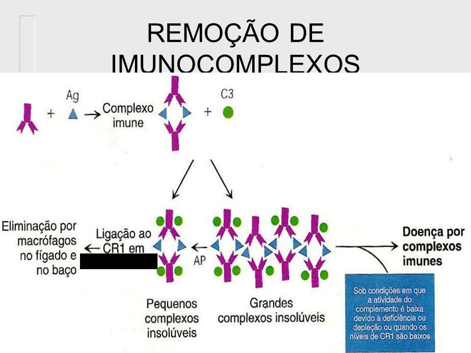 Remoção de imune-complexos