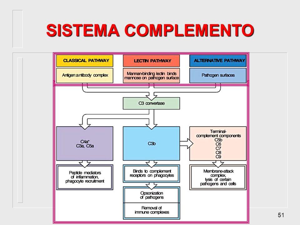 50 REGULAÇÃO DA ATIVAÇÃO FUNÇÕES BIOLÓGICAS DEFICIÊNCIAS COMPLEMENTO