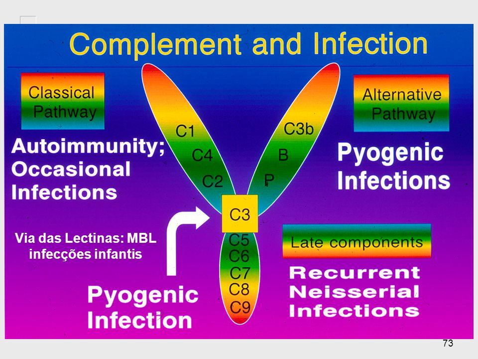 72 Deficiências do Complemento na Via Alternativa (cont.) ComponenteDoençaMecanismo Properdina (ligada ao X) Susceptibilidade a meningite meningocócic