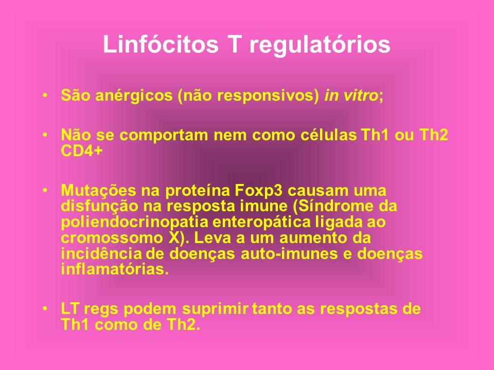Linfócitos T regulatórios São anérgicos (não responsivos) in vitro; Não se comportam nem como células Th1 ou Th2 CD4+ Mutações na proteína Foxp3 causa