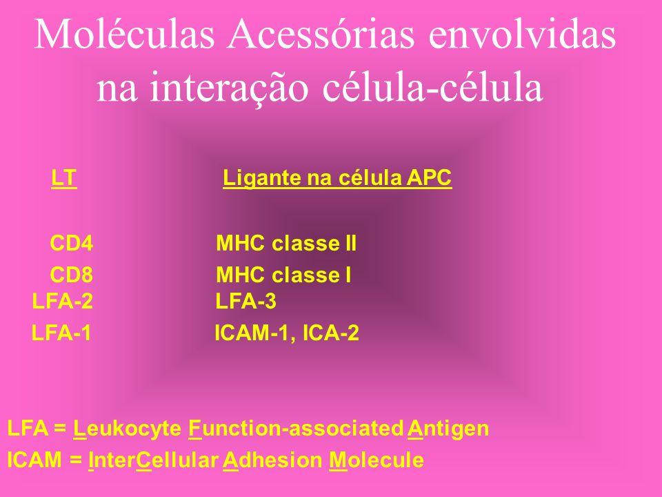 Moléculas Acessórias envolvidas na interação célula-célula LT Ligante na célula APC CD4 MHC classe II CD8 MHC classe I LFA-2 LFA-3 LFA-1 ICAM-1, ICA-2