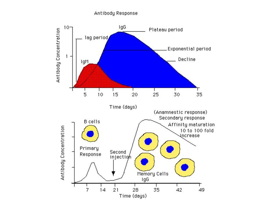 Vacinas de última geração Detoxificação genética: Mutagênese sítio-dirigida Toxina colérica linhagem CVD103 Toxina Pertussis (códons para 2 aminoácidos) Toxina Diftérica Vetores Vivos: Vaccínia, Salmonellas, Adenovírus (expressão do antígeno pelo próprio hospedeiro)