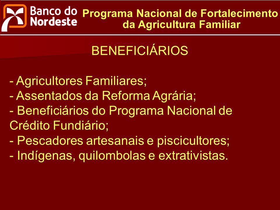 Programa Nacional de Fortalecimento da Agricultura Familiar BENEFICIÁRIOS - Agricultores Familiares; - Assentados da Reforma Agrária; - Beneficiários do Programa Nacional de Crédito Fundiário; - Pescadores artesanais e piscicultores; - Indígenas, quilombolas e extrativistas.