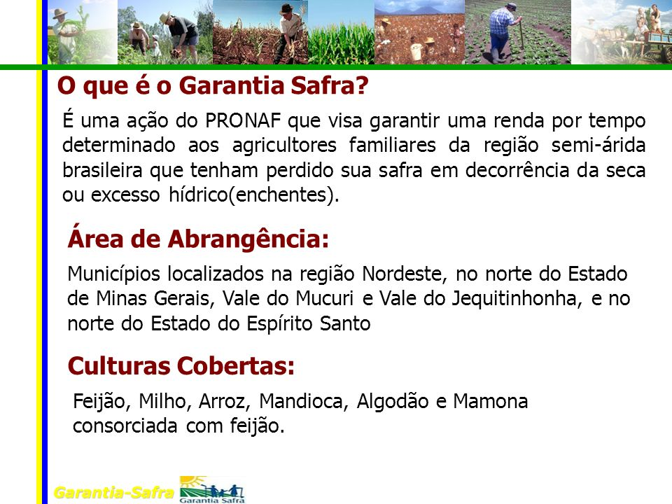 Garantia-Safra O que é o Garantia Safra? É uma ação do PRONAF que visa garantir uma renda por tempo determinado aos agricultores familiares da região