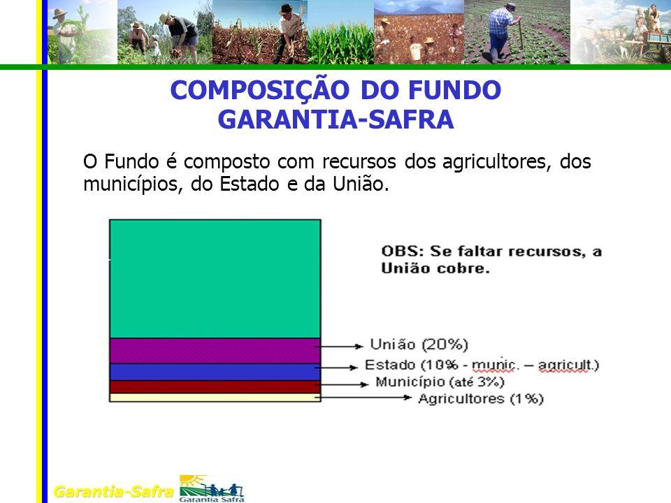 Garantia-Safra COMPOSIÇÃO DO FUNDO GARANTIA-SAFRA O Fundo é composto com recursos dos agricultores, dos municípios, do Estado e da União.