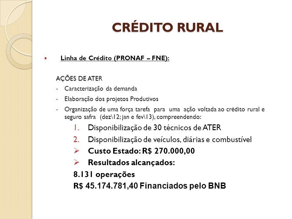 CRÉDITO RURAL CRÉDITO RURAL Linha de Crédito (PRONAF – FNE): AÇÕES DE ATE AÇÕES DE ATER -Caracterização da demanda -Elaboração dos projetos Produtivos