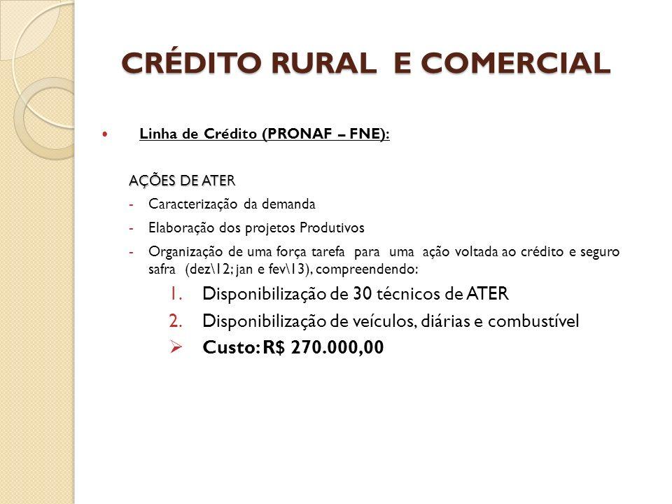 DISTRIBUIÇÃO DE BAGAÇO DE CANA 6.600 ton 30% Distribuído Saldo em andamento Recursos – Governo do Estado/FECOEP – R$ 330.000,00 APOIO A DISTRIBUIÇÃO DE MILHO SUBSIDIADO ATRAVÉS DA CONAB Disponibilização dos galpões (Arapiraca e Sanana do Ipanema) III- ALIMENTACAO ANIMAL