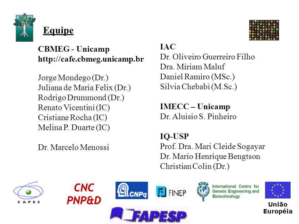 Equipe CBMEG - Unicamp http://cafe.cbmeg.unicamp.br Jorge Mondego (Dr.) Juliana de Maria Felix (Dr.) Rodrigo Drummond (Dr.) Renato Vicentini (IC) Cris