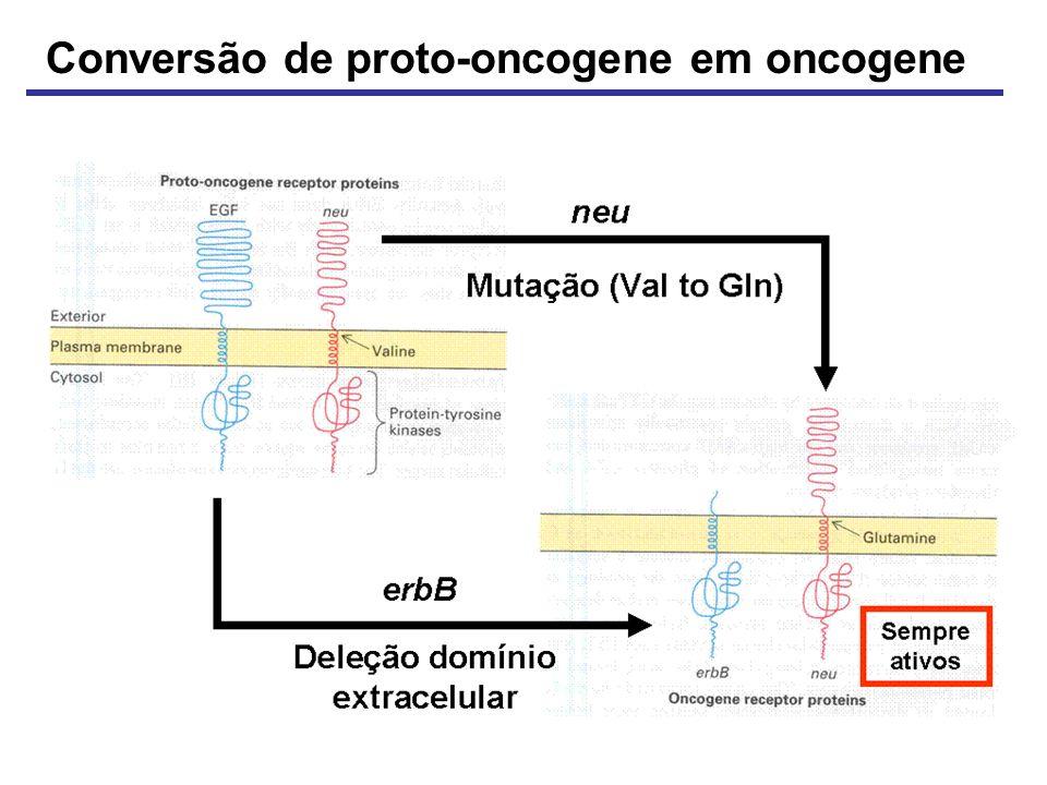 Conversão de proto-oncogene em oncogene
