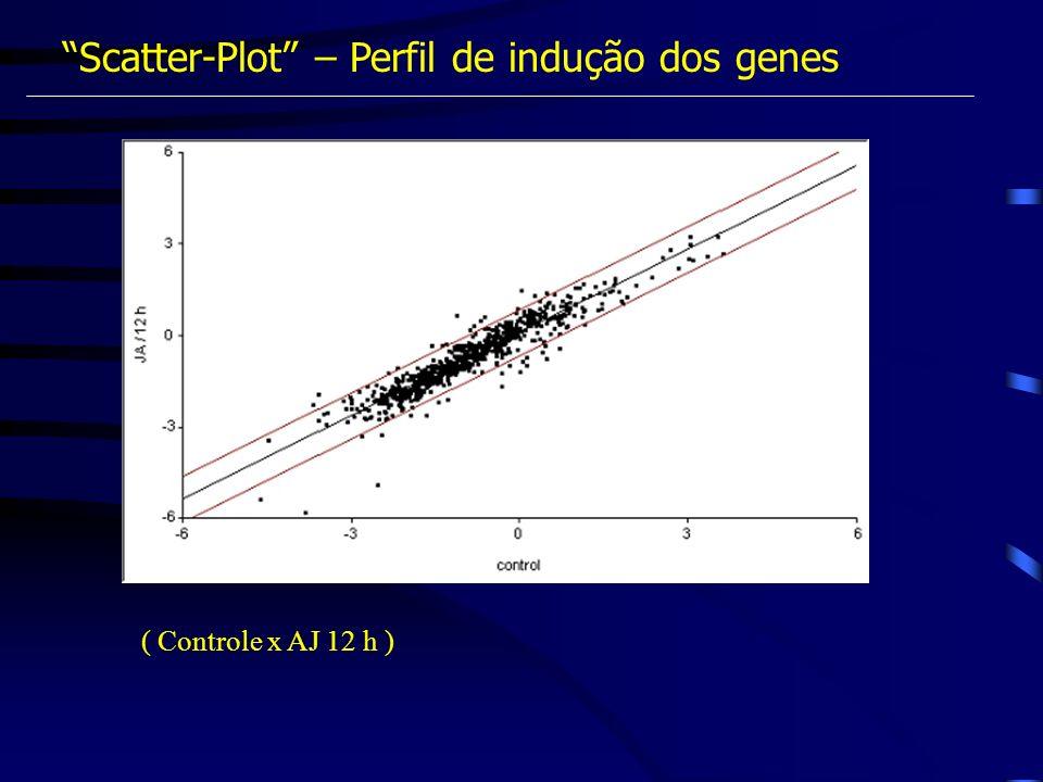 Scatter-Plot – Perfil de indução dos genes ( Controle x AJ 12 h )