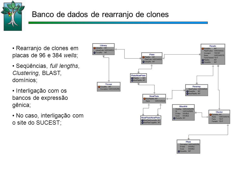 Rearranjo de clones em placas de 96 e 384 wells; Seqüências, full lengths, Clustering, BLAST, domínios; Interligação com os bancos de expressão gênica; No caso, interligação com o site do SUCEST; Banco de dados de rearranjo de clones