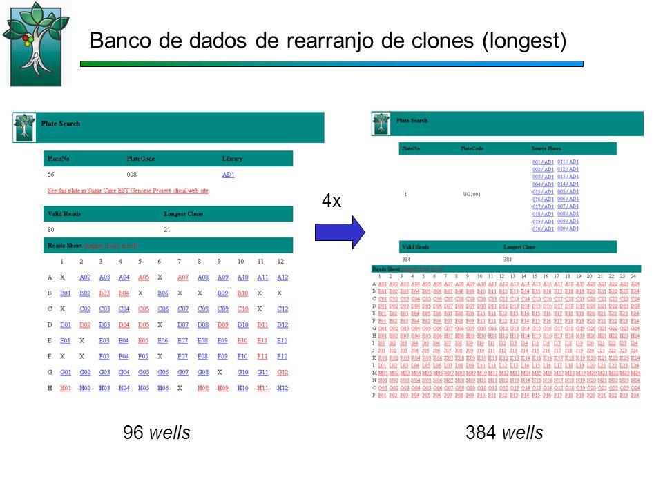 96 wells384 wells 4x Banco de dados de rearranjo de clones (longest)