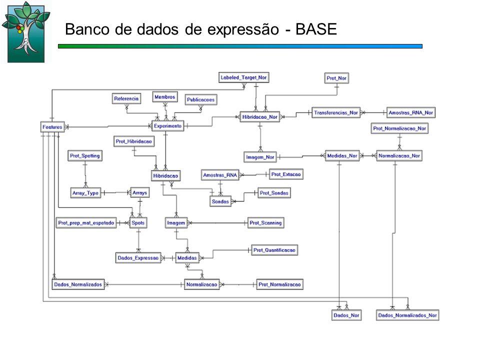 Banco de dados de expressão - BASE