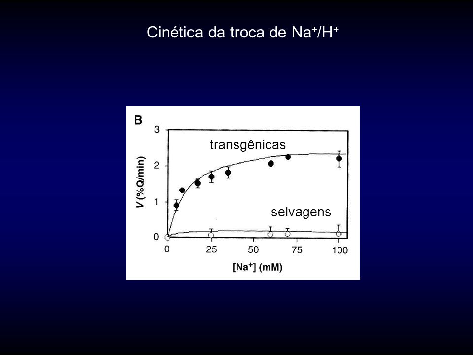 Cinética da troca de Na + /H + transgênicas selvagens
