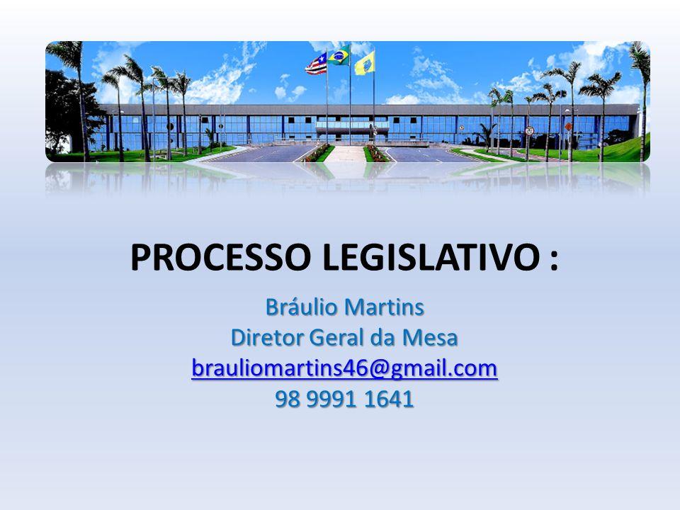 PROCESSO LEGISLATIVO : Bráulio Martins Diretor Geral da Mesa brauliomartins46@gmail.com 98 9991 1641