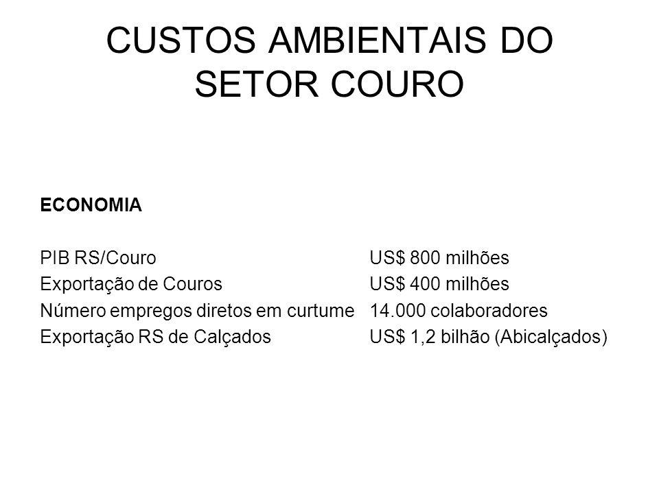 CUSTOS AMBIENTAIS DO SETOR COURO ECONOMIA PIB RS/CouroUS$ 800 milhões Exportação de CourosUS$ 400 milhões Número empregos diretos em curtume14.000 col