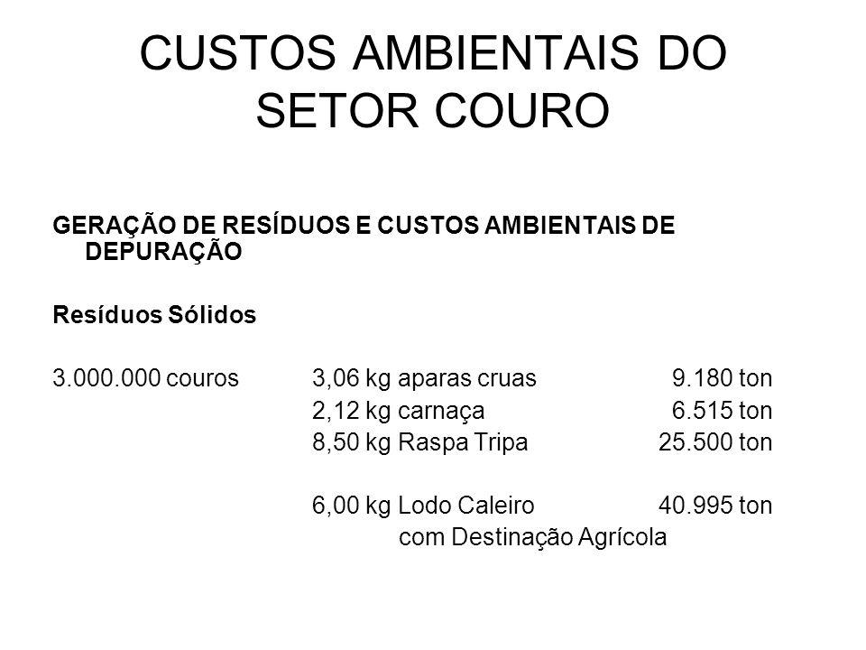 CUSTOS AMBIENTAIS DO SETOR COURO GERAÇÃO DE RESÍDUOS E CUSTOS AMBIENTAIS DE DEPURAÇÃO Resíduos Sólidos 12.000.000 couros2,12 kg aparas curtidas 25.440 ton 3,40 kg serragem 40.800 ton 8,80 kg lodo105.600 ton Total de Resíduo Sólido171.840 ton Custo de DeposiçãoR$ 60,00 TOTAL R$ 10.310.400,00