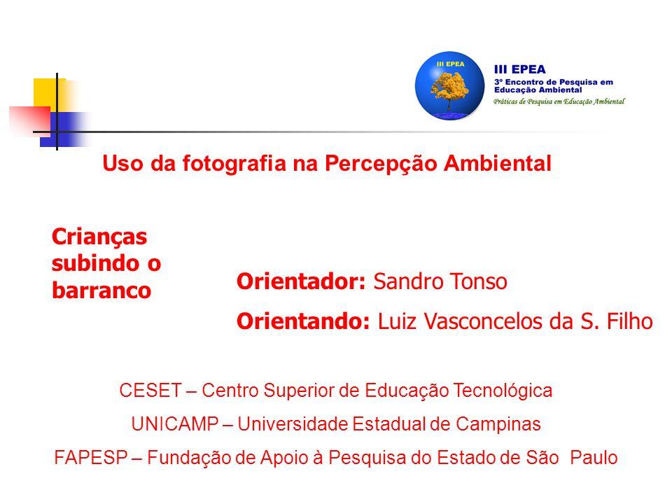 Orientador: Sandro Tonso Orientando: Luiz Vasconcelos da S.