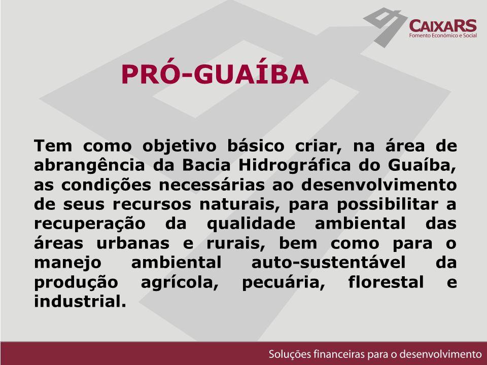 PRÓ-GUAÍBA Tem como objetivo básico criar, na área de abrangência da Bacia Hidrográfica do Guaíba, as condições necessárias ao desenvolvimento de seus recursos naturais, para possibilitar a recuperação da qualidade ambiental das áreas urbanas e rurais, bem como para o manejo ambiental auto-sustentável da produção agrícola, pecuária, florestal e industrial.