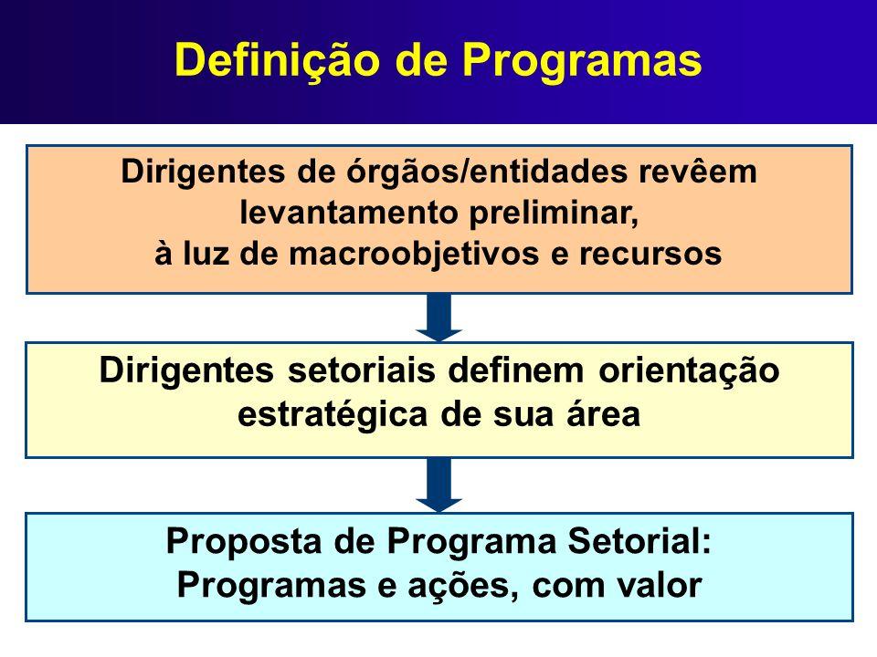 Definição de Programas Dirigentes setoriais definem orientação estratégica de sua área Dirigentes de órgãos/entidades revêem levantamento preliminar,