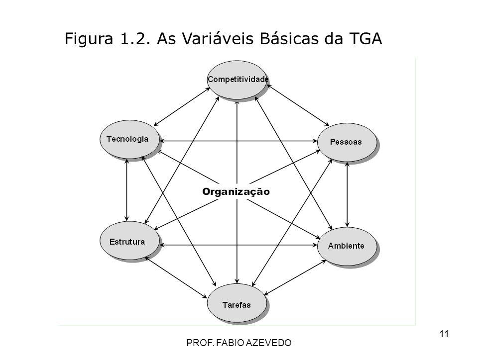 11 Figura 1.2. As Variáveis Básicas da TGA PROF. FABIO AZEVEDO