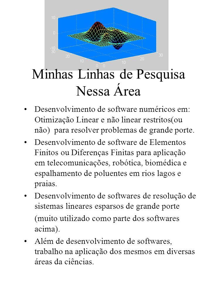 Minhas Linhas de Pesquisa Nessa Área Desenvolvimento de software numéricos em: Otimização Linear e não linear restritos(ou não) para resolver problemas de grande porte.