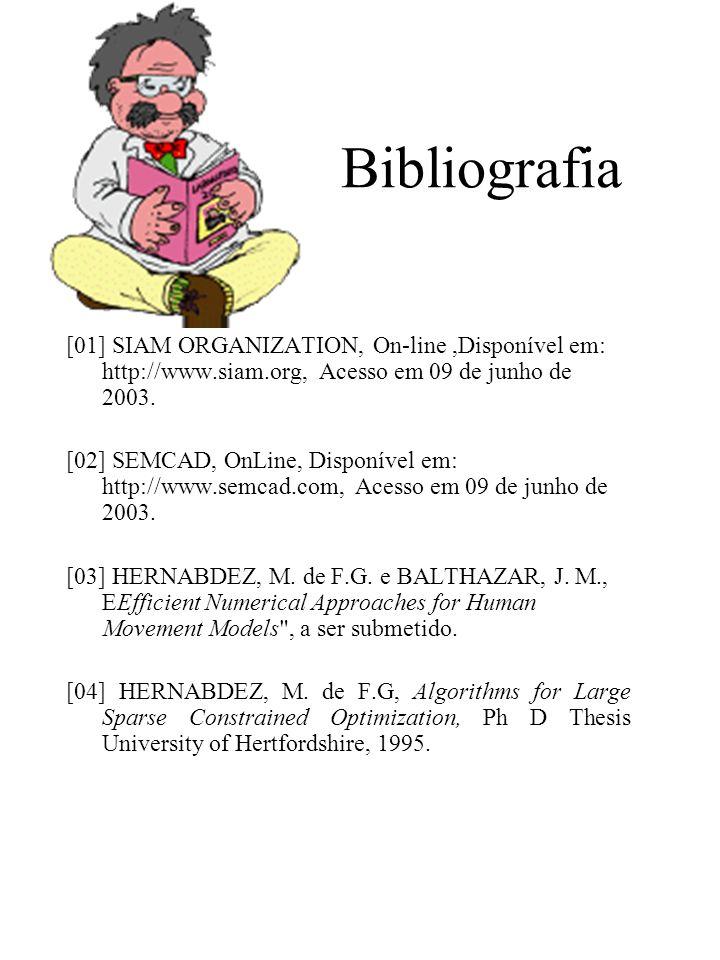 Bibliografia [01] SIAM ORGANIZATION, On-line,Disponível em: http://www.siam.org, Acesso em 09 de junho de 2003.