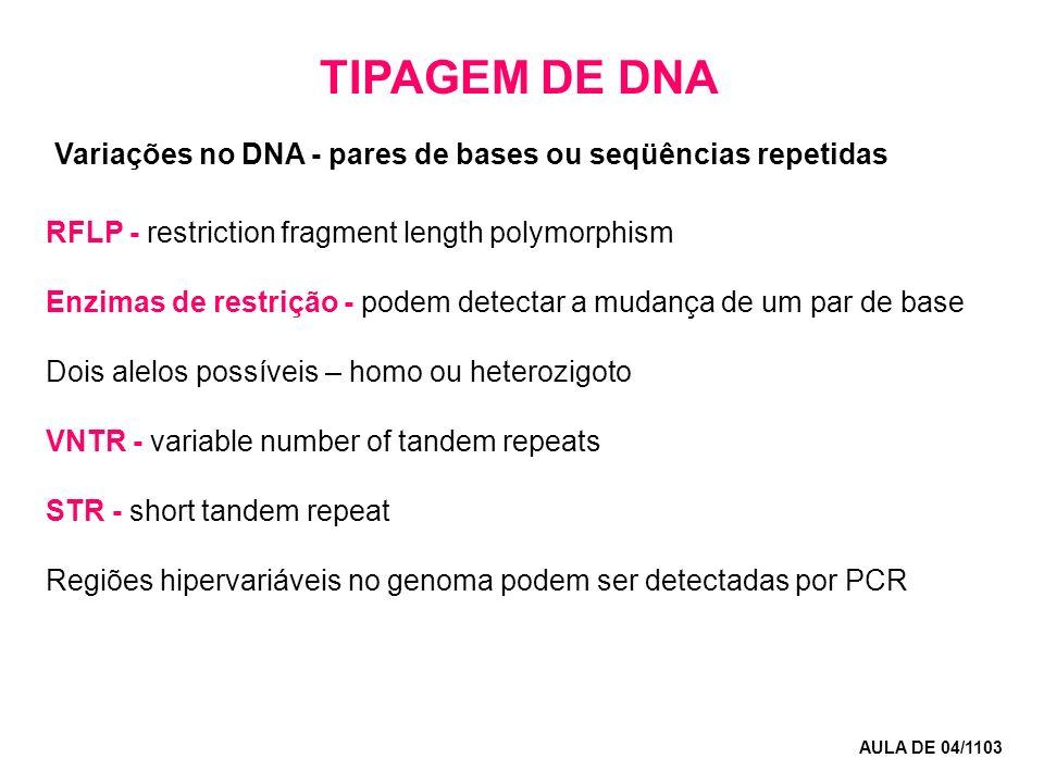 TIPAGEM DE DNA AULA DE 04/1103 RFLP - restriction fragment length polymorphism Enzimas de restrição - podem detectar a mudança de um par de base Dois alelos possíveis – homo ou heterozigoto VNTR - variable number of tandem repeats STR - short tandem repeat Regiões hipervariáveis no genoma podem ser detectadas por PCR Variações no DNA - pares de bases ou seqüências repetidas