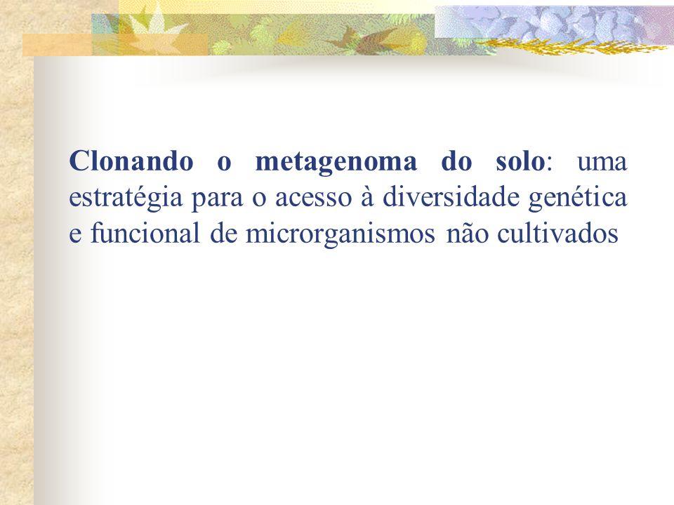 Introdução Diversidade de microrganismos Métodos tradicionais de cultivo Conceito de METAGENOMA Importância e utilidade dos microrganismos Acesso ao DNA metagenômico do solo Uso de cromossomos artificiais de bactéria (BAC)