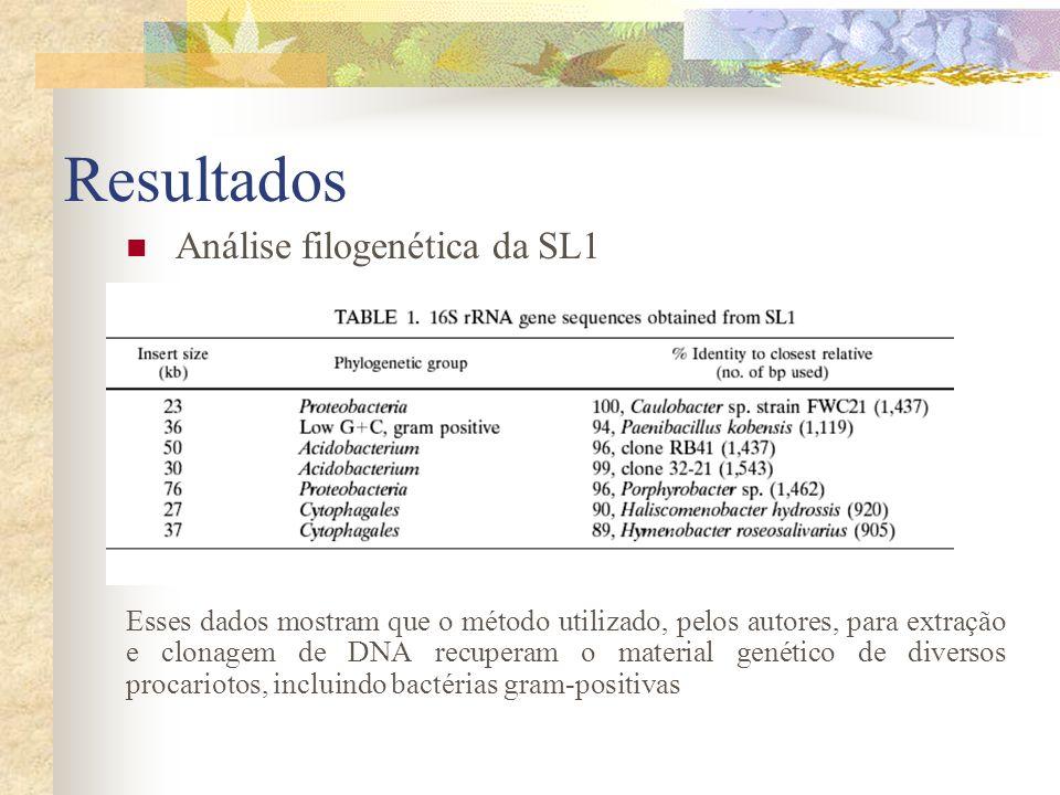 Resultados Análise filogenética da SL1 Esses dados mostram que o método utilizado, pelos autores, para extração e clonagem de DNA recuperam o material