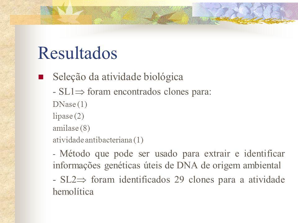 Resultados Seleção da atividade biológica - SL1 foram encontrados clones para: DNase (1) lipase (2) amilase (8) atividade antibacteriana (1) - Método
