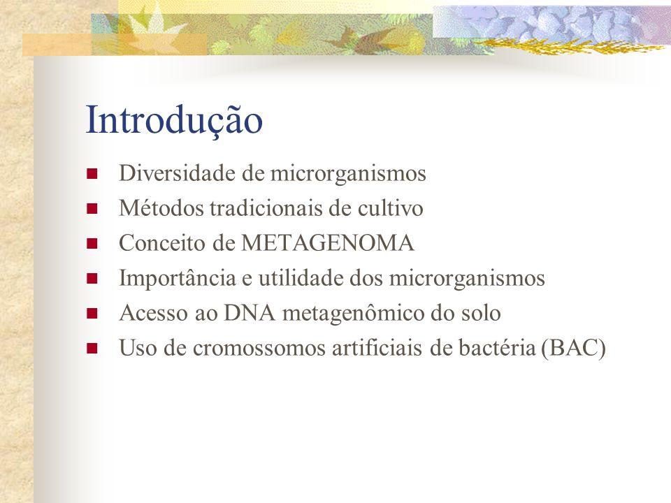 Introdução Diversidade de microrganismos Métodos tradicionais de cultivo Conceito de METAGENOMA Importância e utilidade dos microrganismos Acesso ao D