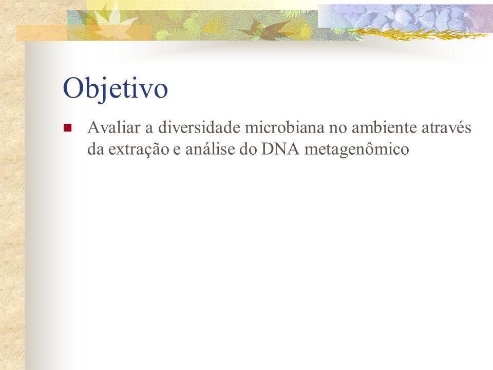 Objetivo Avaliar a diversidade microbiana no ambiente através da extração e análise do DNA metagenômico