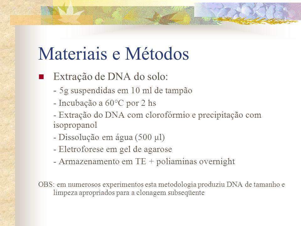 Materiais e Métodos Extração de DNA do solo: - 5g suspendidas em 10 ml de tampão - Incubação a 60°C por 2 hs - Extração do DNA com clorofórmio e preci