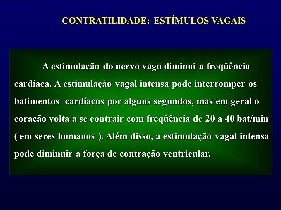 CONTRATILIDADE: ESTÍMULOS VAGAIS A estimulação do nervo vago diminui a freqüência cardíaca. A estimulação vagal intensa pode interromper os batimentos