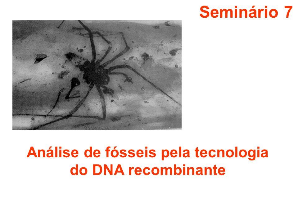 Seminário 7 Análise de fósseis pela tecnologia do DNA recombinante