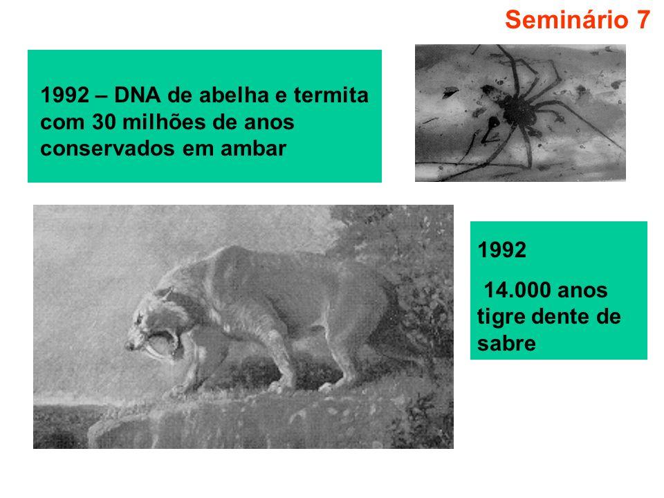 Seminário 7 1992 – DNA de abelha e termita com 30 milhões de anos conservados em ambar 1992 14.000 anos tigre dente de sabre