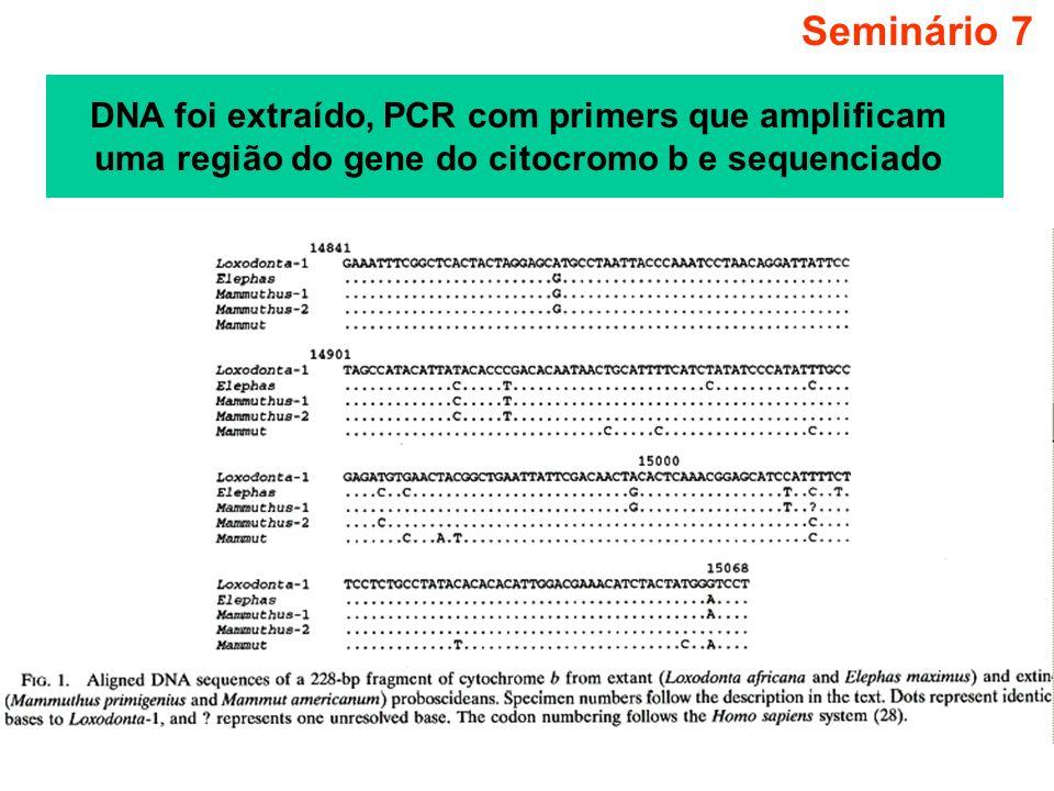 Seminário 7 DNA foi extraído, PCR com primers que amplificam uma região do gene do citocromo b e sequenciado