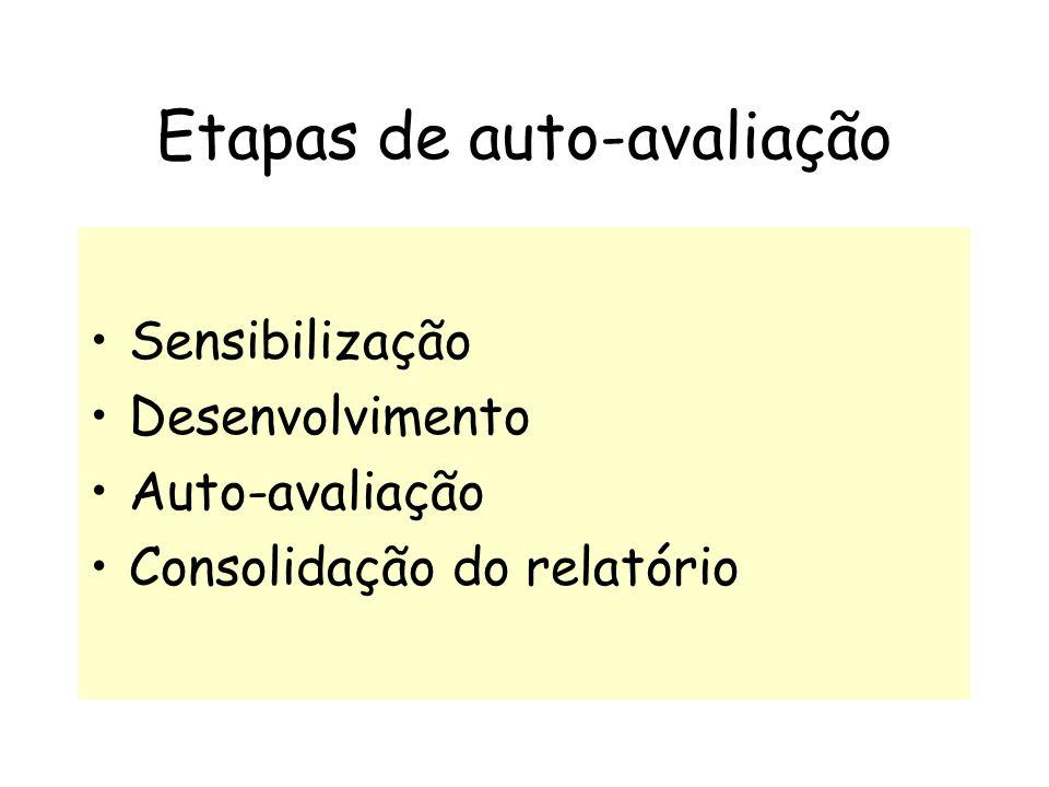 Etapas de auto-avaliação Sensibilização Desenvolvimento Auto-avaliação Consolidação do relatório