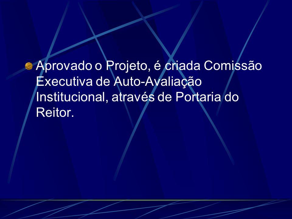 Aprovado o Projeto, é criada Comissão Executiva de Auto-Avaliação Institucional, através de Portaria do Reitor.