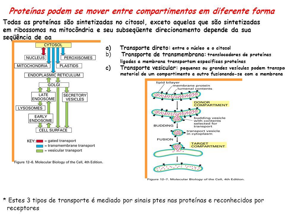 2 tipos de sinais nas proteinas Ex.