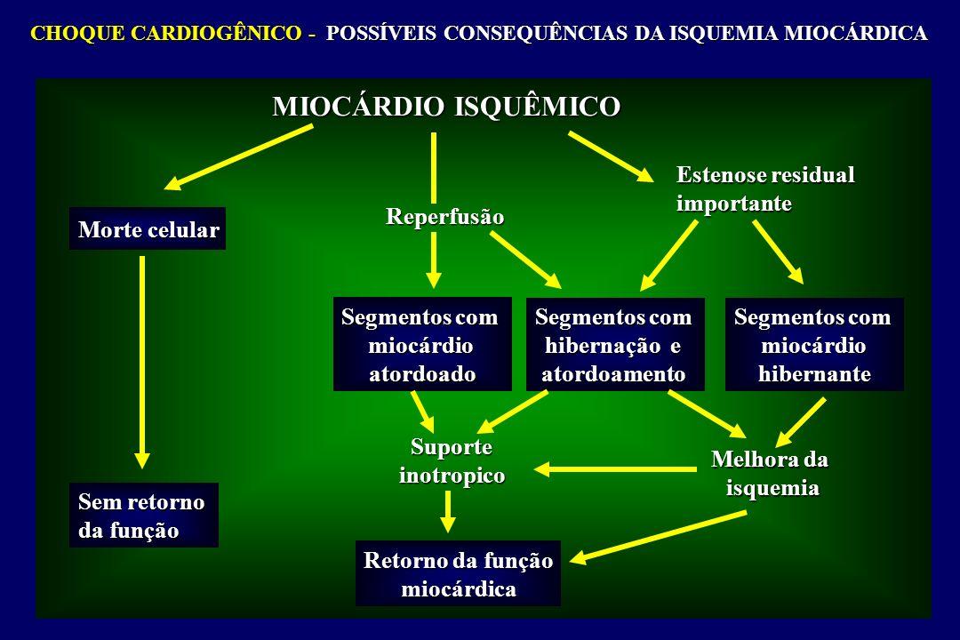CHOQUE CARDIOGÊNICO - POSSÍVEIS CONSEQUÊNCIAS DA ISQUEMIA MIOCÁRDICA MIOCÁRDIO ISQUÊMICO Morte celular Sem retorno da função Reperfusão Segmentos com miocárdioatordoado hibernação e atordoamento Segmentos com miocárdiohibernante Estenose residual importante Suporteinotropico Melhora da isquemia Retorno da função miocárdica