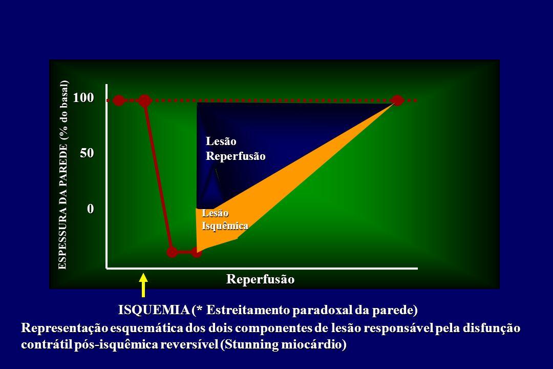 100500 LesãoReperfusão LesãoIsquêmica Reperfusão ISQUEMIA (* Estreitamento paradoxal da parede) Representação esquemática dos dois componentes de lesão responsável pela disfunção contrátil pós-isquêmica reversível (Stunning miocárdio) ESPESSURA DA PAREDE (% do basal)