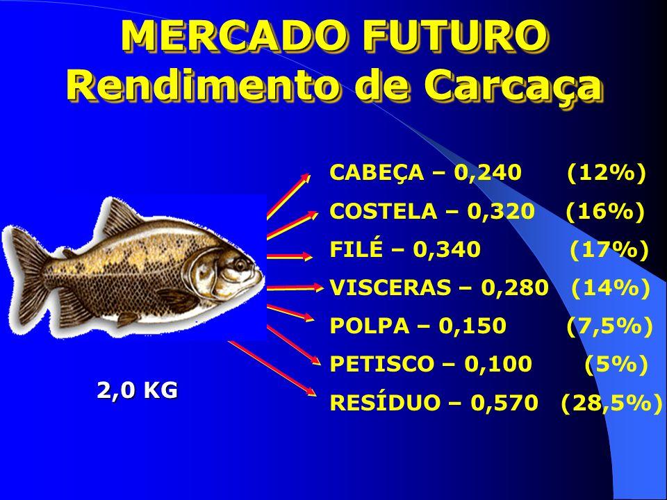 CUSTO DE PRODUÇÃO DE PEIXES CONDIÇÕES IDEAIS Kubtiza F. & Caseiro A. – Jan. 2003