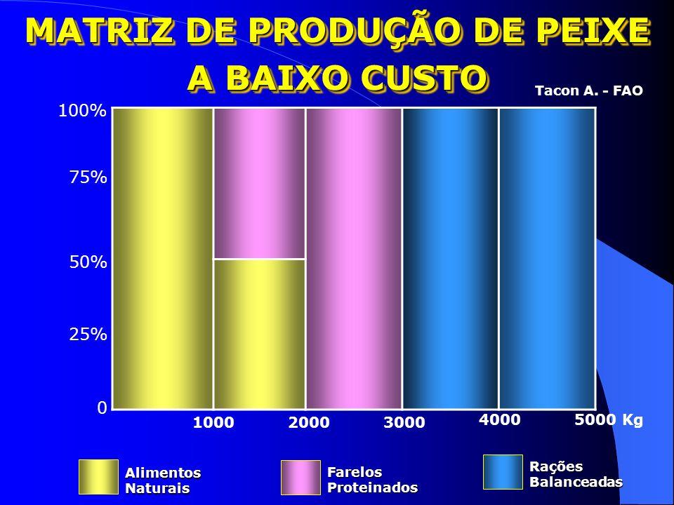Matéria Prima Produtos Processados Peso liquido /grs Preço / Kg Preço Total R$ Cabeça0,2401,500,36 Costela0,3206,001,92 Filé0,3408,502,89 Vísceras0,28
